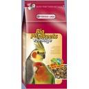 Big Parakeets 4kg - pokarm dla średnich papug (nimfy, nierozłączki...)