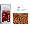 NutriBird T16 10kg - granulat dla tukanów