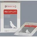 Recup-lyt - Elektrolity + glukoza 240g (20 saszetek)