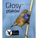 Głosy ptaków cz. II