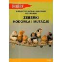 Poradnik - Zeberki: Hodowla i mutacje