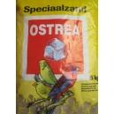 Piasek brązowy dla ptaków o zapachu anyżowym 5kg